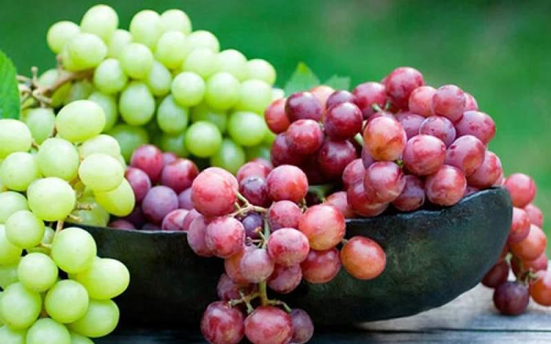 خواص بینظیر انگور؛ این میوه را دست کم نگیرید