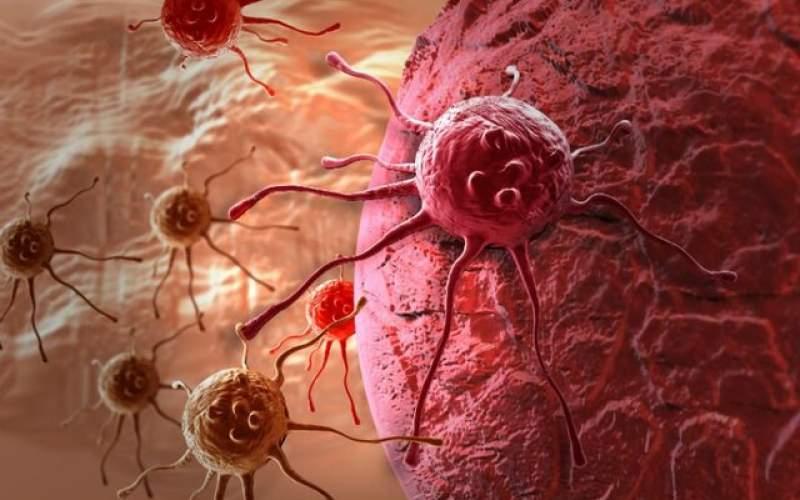 ابداع یک مولکول برای درمان انواع سرطان