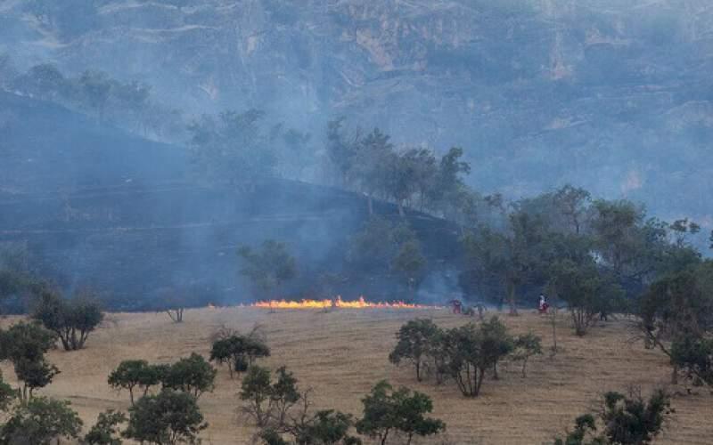 خطر آتشسوزی جنگلهای زاگرس اصفهان
