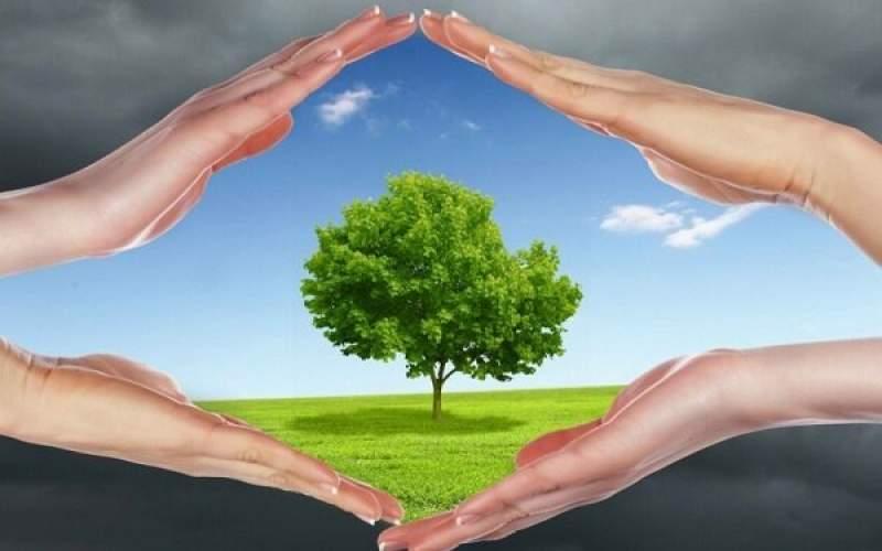 هوای پاک به پیشگیری از آلزایمر کمک می کند