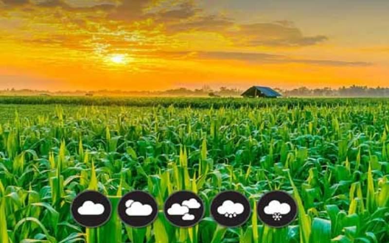 بارش در سال زراعی جدید با تاخیر آغاز می شود