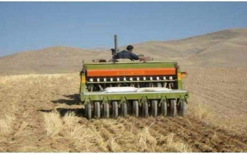 ارقام جدید زراعی دیم به زودی معرفی می شود
