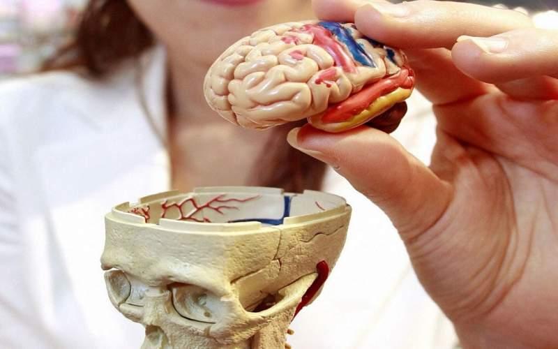 کوچک کردن تومور مغزی با کلاه مغناطیسی