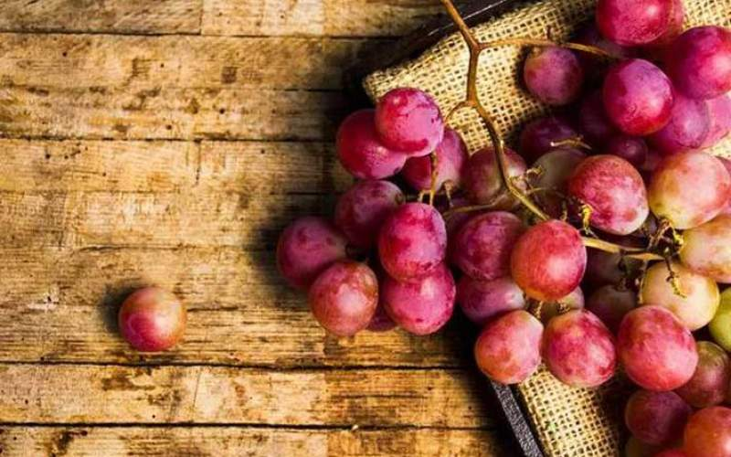 عفونت گوش را با این میوه تابستانی درمان کنید
