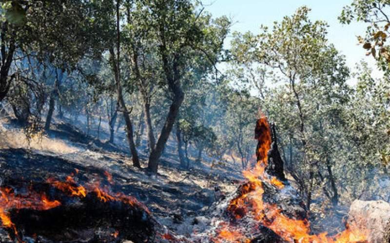 شعله ور شدن دوباره آتش در کوه پهن گچساران