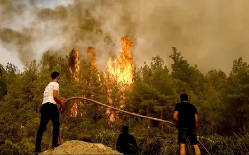 گسترش آتش سوزی های جنگلی در ایتالیا