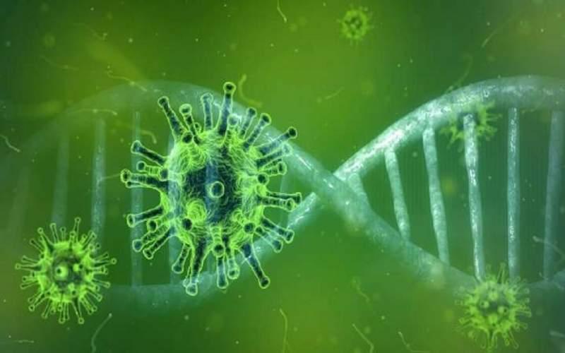 ورود ویروس کرونا به DNA بیماران صحت ندارد