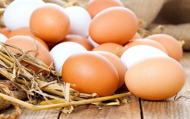 استمرار نابه سامانی بازار تخم مرغ تا بهمن