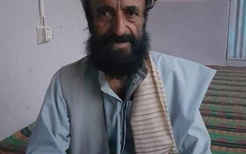 تروریستهای طالبان یک مورخ را کشتند
