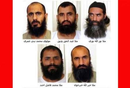 رویش تروریستها در زمین شورهزار