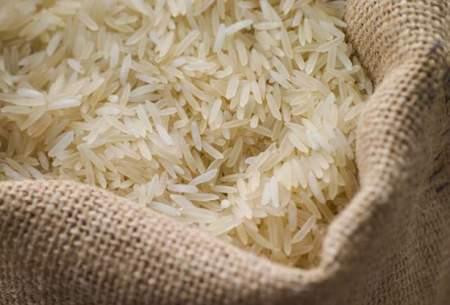 واردات برنج از اول مهرماه آزاد شود
