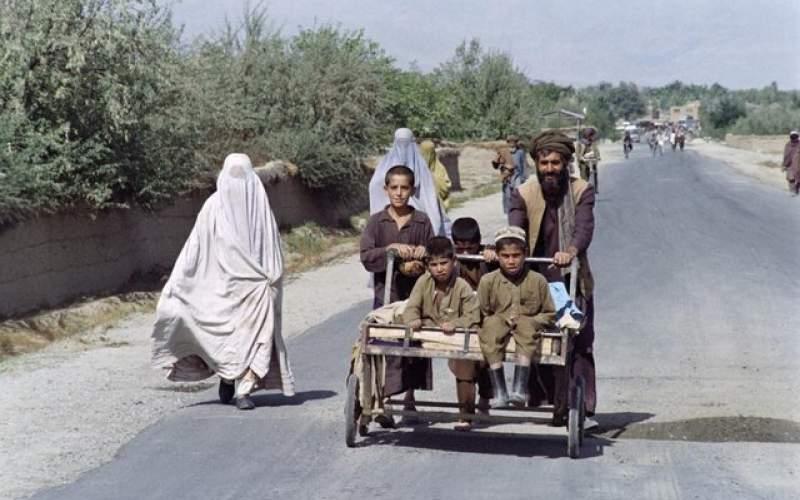 طالبان: وظیفه زن فرزندآوری است