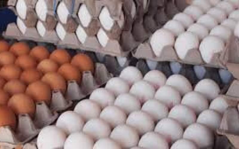 قیمت هرشانه تخم مرغ به بیش از ۵۰ هزار تومان رسید