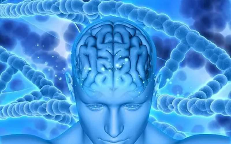 ارتباط بیشفعالی و زوال عقل در بین نسلها