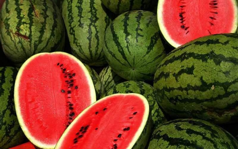 چرا هندوانه گران شد؟/ قیمت انواع میوه