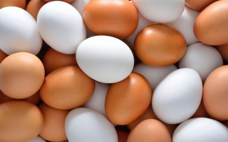پشت پرده افزایش قیمت تخممرغ