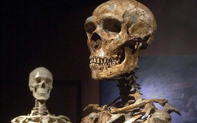 انسانهای ماقبل تاریخ ازدواج فامیلی نداشتند