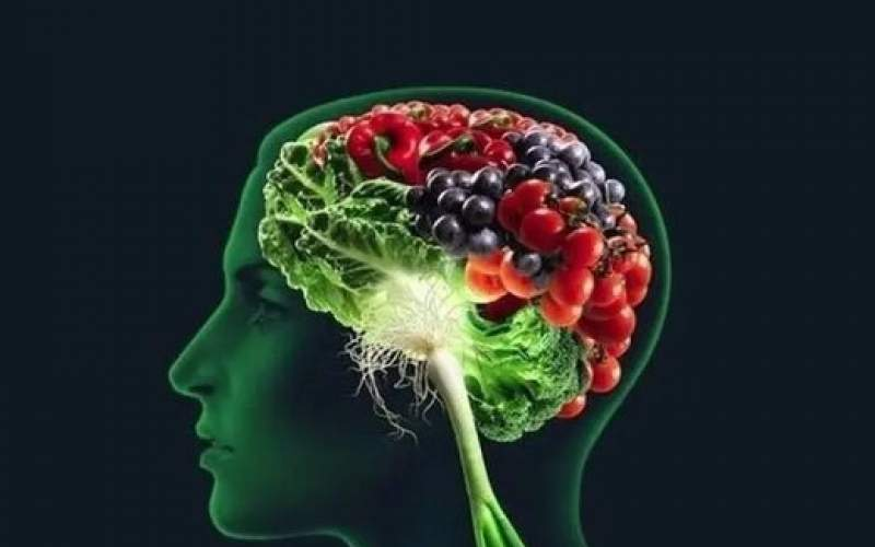 حافظه خود را با این سه ماده غذایی تقویت کنید