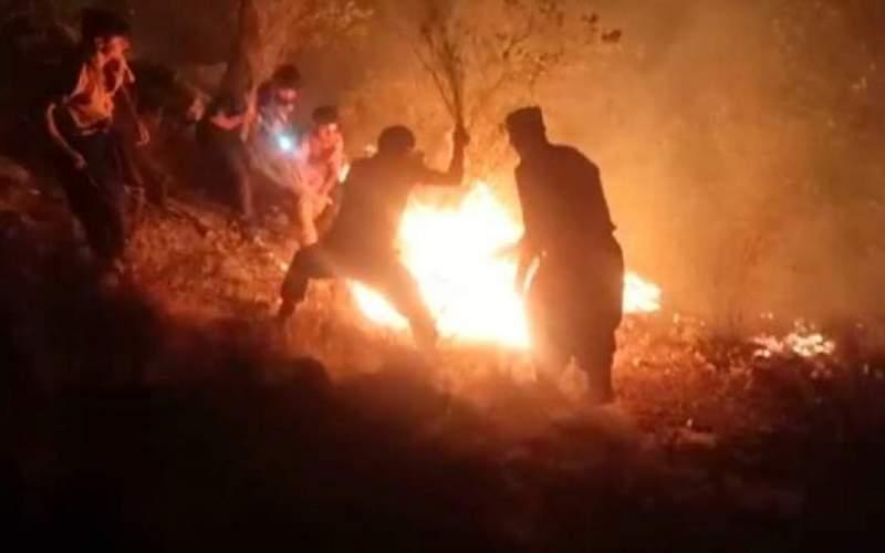 """آتش سوزی جنگلهای کوه """"نیر"""" ادامه دارد"""