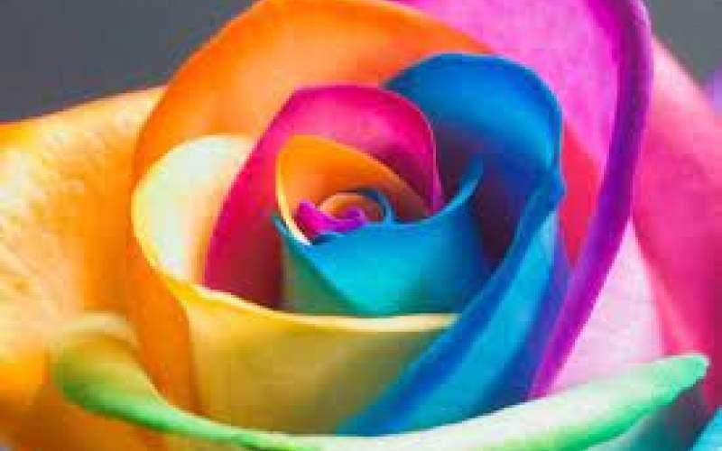 تاثیر جالب رنگها روی بدن و روحیه انسان