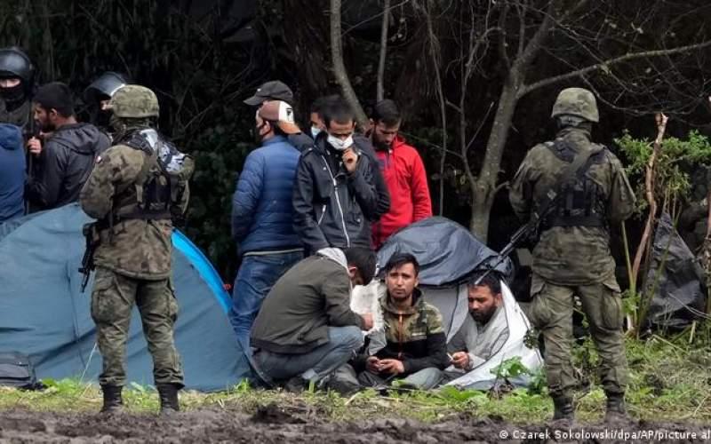 كشف جسد چهار پناهجو در مرز بلاروس