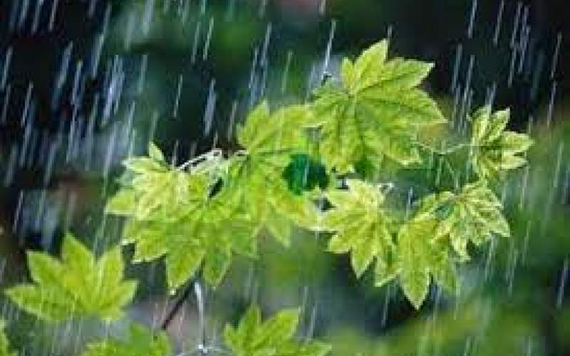 کاهش ۴۰ درصدی بارندگیها نسبت به نرمال