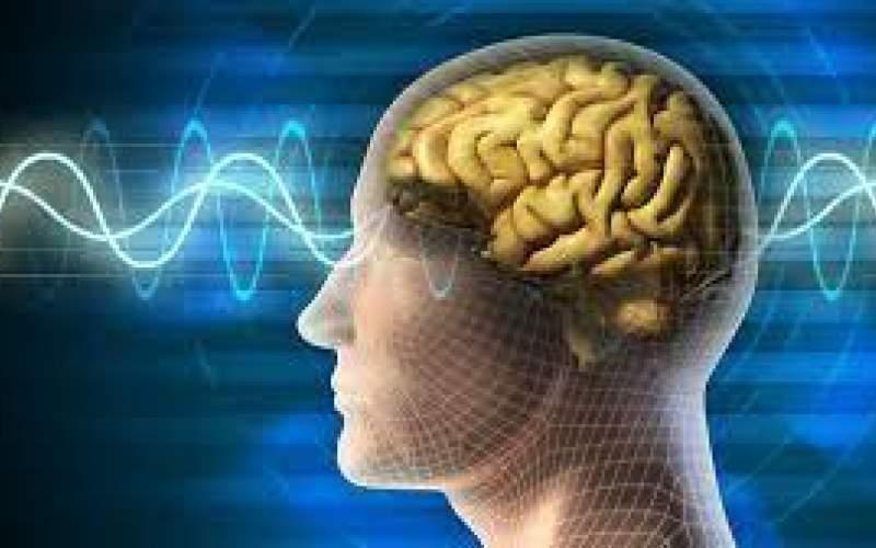 روش متخصصان مغز برای تقویت حافظه