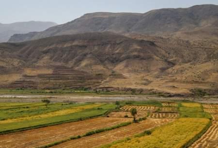 "برداشت برنج از شالیزارهای منطقه الموت  <img src=""https://cdn.baharnews.ir/images/picture_icon.gif"" width=""16"" height=""13"" border=""0"" align=""top"">"