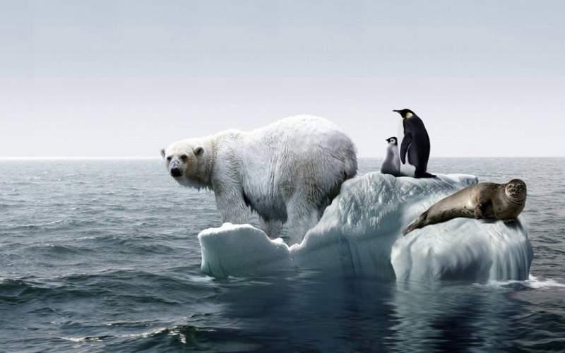 بحران گرم شدن کره زمین تا ۲۰۳۰رکورد میشکند