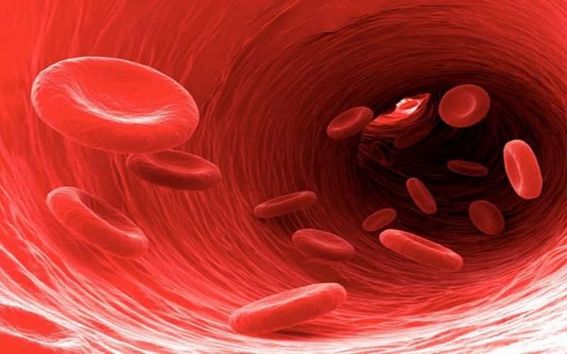 بهترین خوراکیها برای درمان کم خونی چیست؟