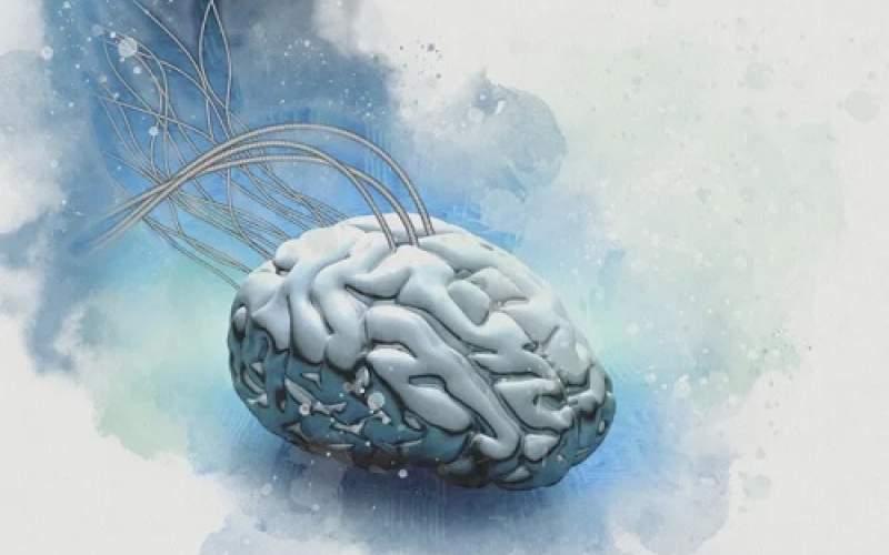 امید سامسونگ به کپی مغز انسان روی تراشه