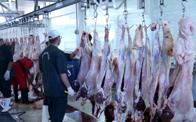 مردم مصرف گوشت گوسفندی را حذف کردهاند