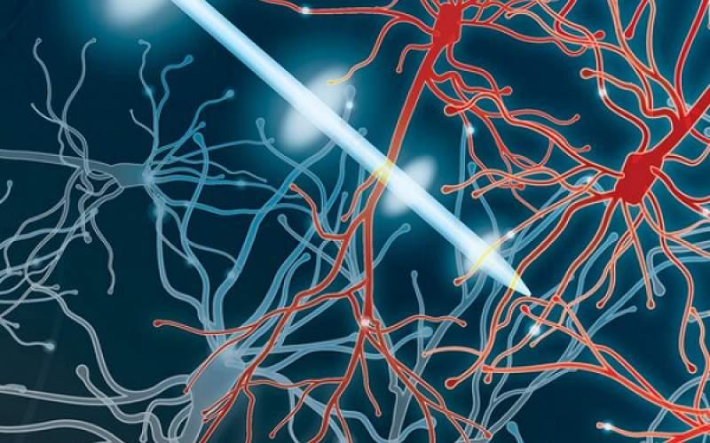 شبیه سازی عمیق مغز برای مقابله با پارکینسون