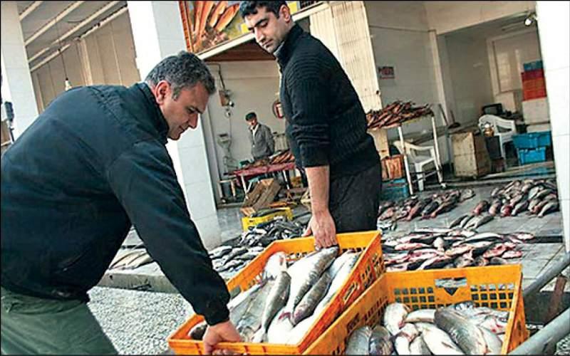 قیمت ماهی قزلآلا به ۱۲۰ هزار تومان می رسد؟