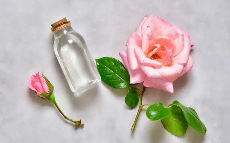 ۲ نوشیدنی معجزهآسا برای سالمندان