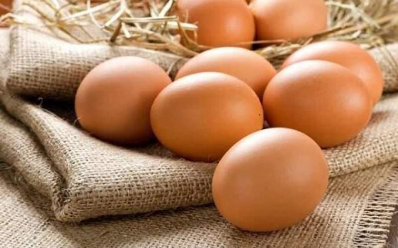 نرخ تخم مرغ شکسته شد؛بازار آرام می گیرد؟