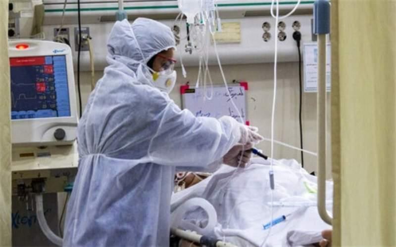 آمار مرگ های کرونایی دوباره صعودی شد