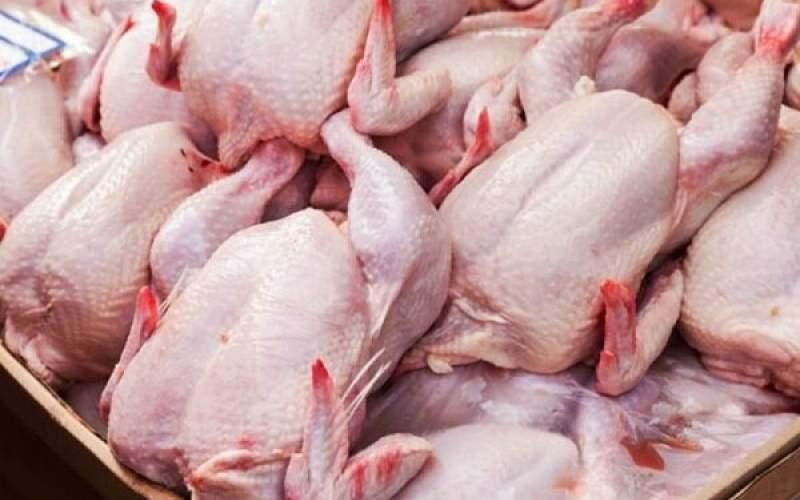 مرغداران خواستار اصلاح قیمت مرغ شدند